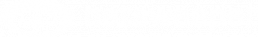 Netsweeper white Logo