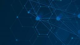Netsweeper and Niagara Networks
